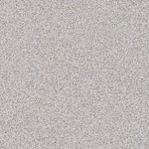 Grey Nebula