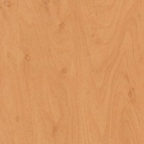 Gold Speckle Maple
