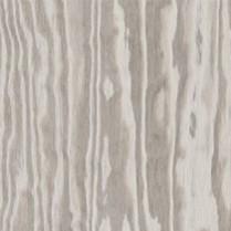 Grey Plywood