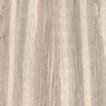 奥里贾纳橄榄木