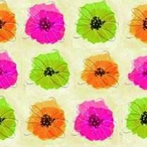 Hibiscus-11