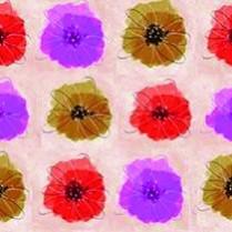 Hibiscus-12