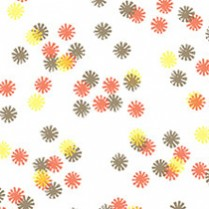 Autumn Lights Daisy