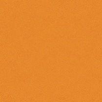 Zeste Orange