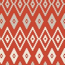 AZTEC Orange