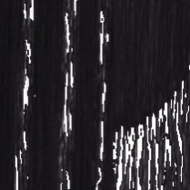 Frêne Charbonné