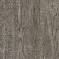 Beauty Oak