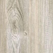 Caruso Pine