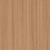 Trendy Walnut