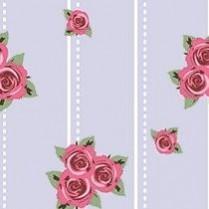 Rosa line 23
